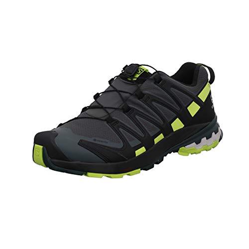 Salomon Herren XA PRO 3D V8 GTX, Leichte Schuhe für Trail Running und Wandern, Wasserdicht, Grau (Urban Chic/Black/Lime Punch), 40 EU
