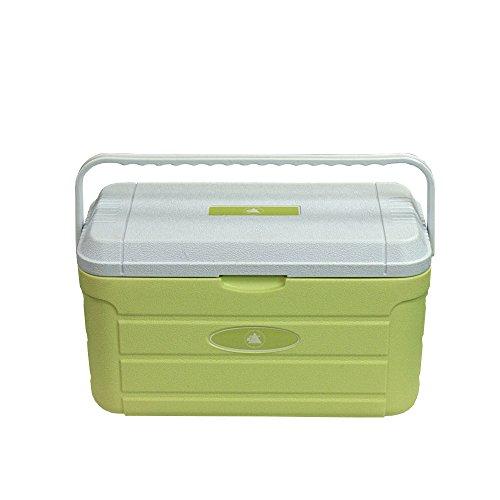 10T Kühlbox Fridgo 20L passive Thermobox PU Kühlbehälter warm/kalt Isolierbox starre Kühltasche Grün