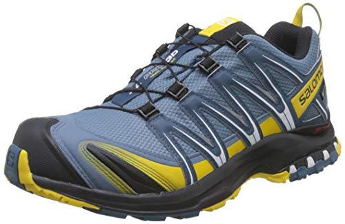 Salomon Herren Trail Running Schuhe, XA PRO 3D GTX, Farbe: blau (Bluestone/Indian Teal/Sulphur) Größe: EU 40