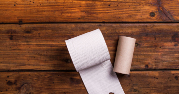Camping Toilettenpapier liegt auf Holz